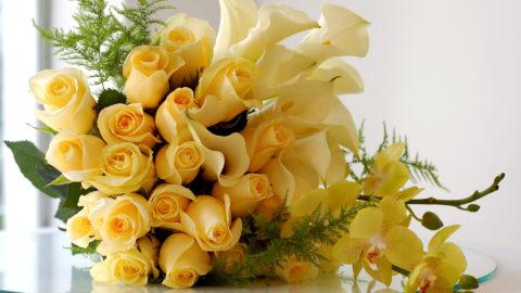 И кивают цветы весенние: с днем рождения, с днем рождения!