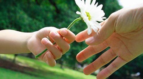 Всех мудрее и дороже, всех доверчивей и строже в этом мире доброта…