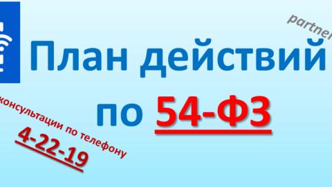 План действий по 54-ФЗ